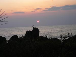 Murotomisaki_sagi_yuuhi